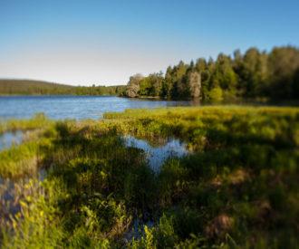 Lake in Kuopio, Finland