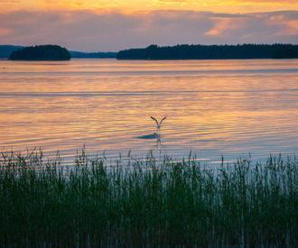 Landscape in Kuopio